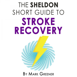 The Sheldon Short Guide to Stroke Recovery 2000